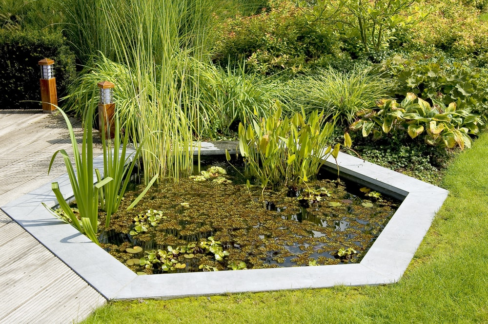 Artificial Pond for small garden