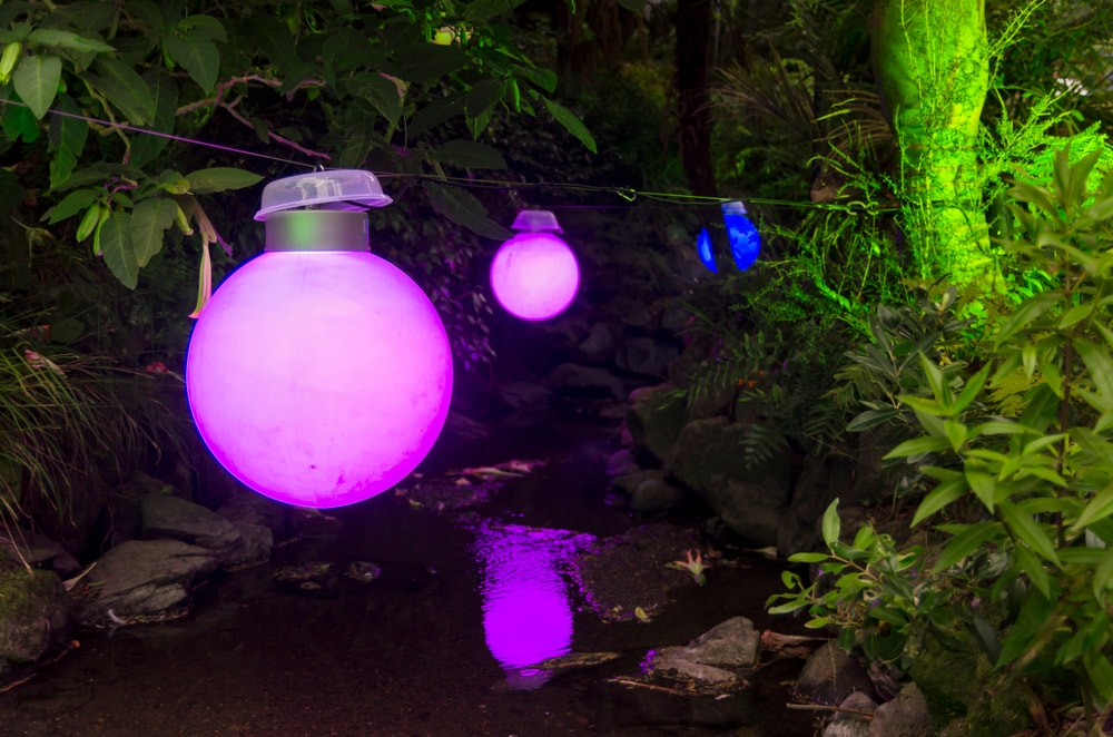 Dazzling lights for gardens