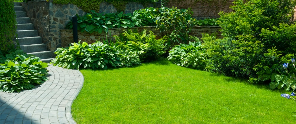 5 Exciting Florida Landscaping Ideas For Small Yards